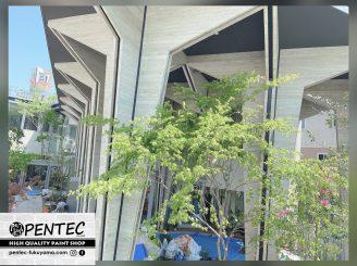 令和2年4月27日 更新! 福山市保育園 外部・内部塗装工事